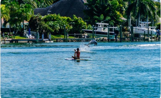 Paddle board photo for kayak and paddleboard page