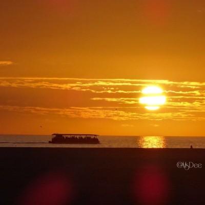 hubbards-sunset-cruises