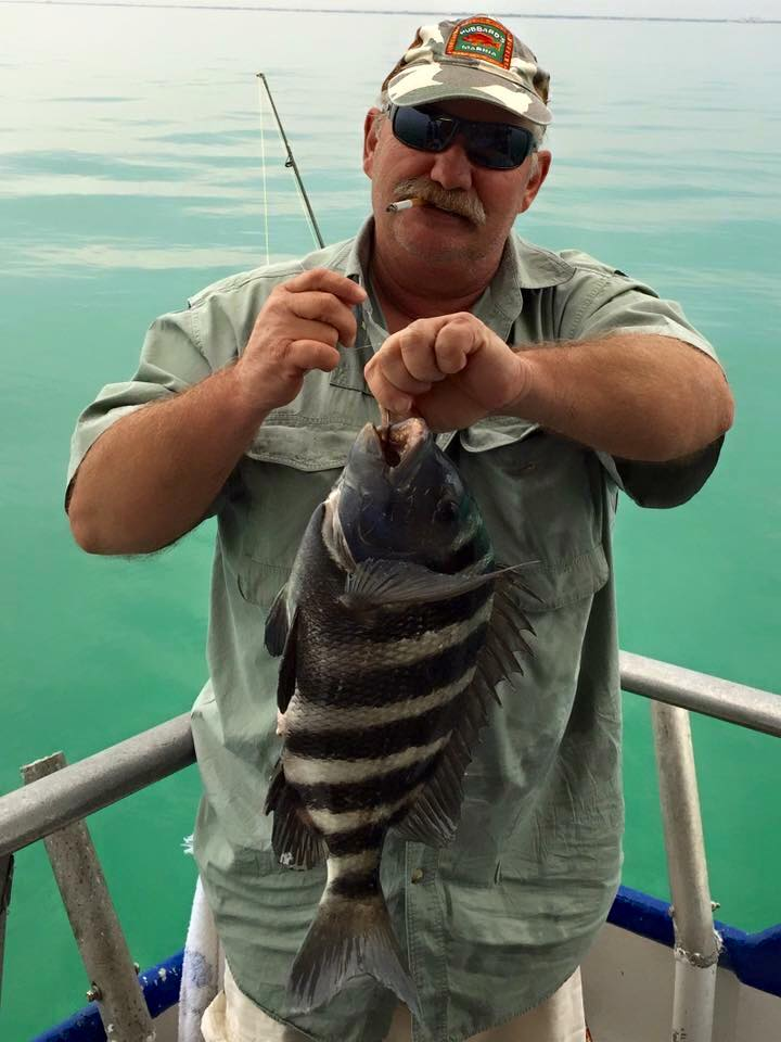 Robert Angus from St. Petersburg showing off a beautiful big sheepshead he caught while fishing at Hubbard's Marina