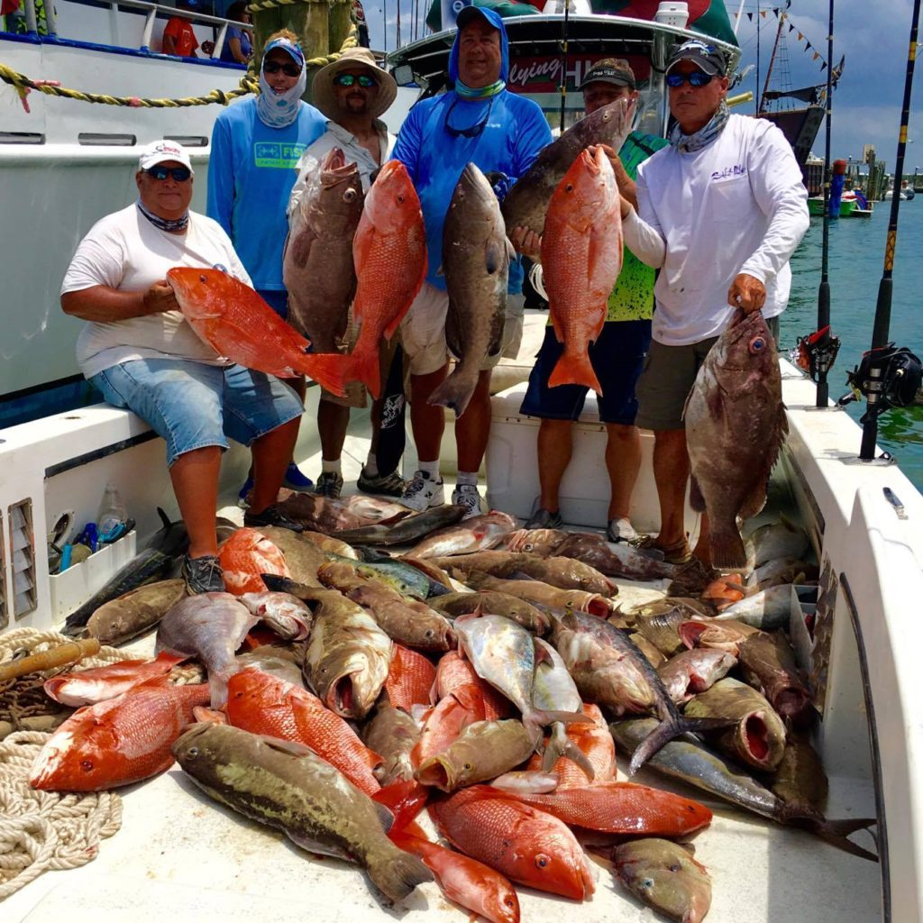 The Flying HUB 1 grouper and snapper