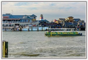 Tampa Bay Ferry & Water Taxi