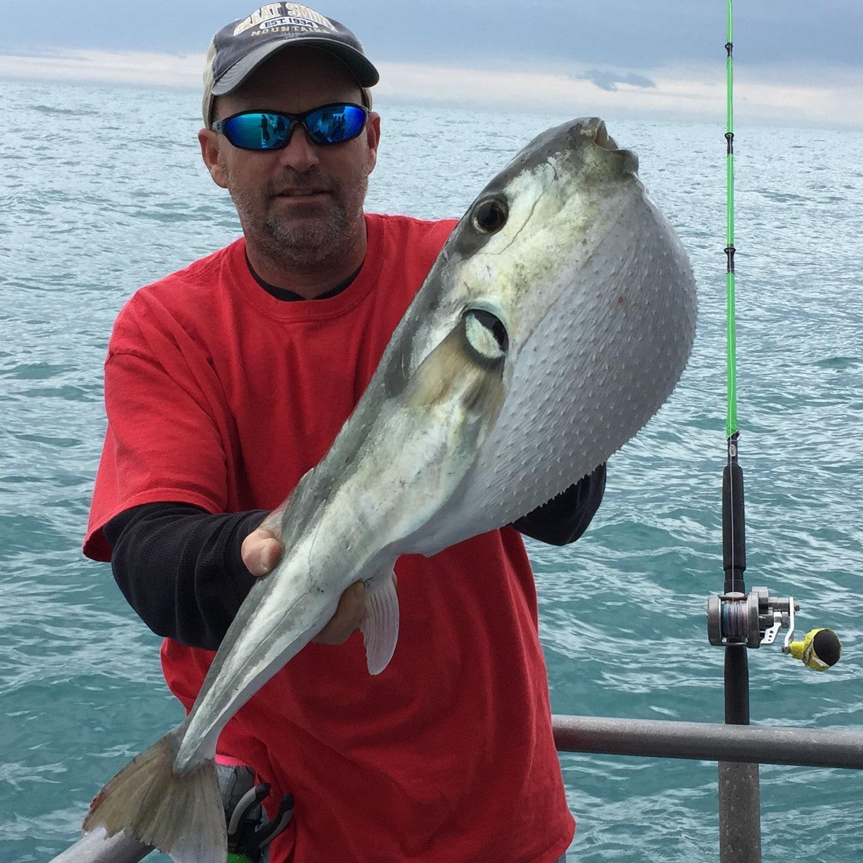 Hubbard's Marina Fishing Report 02/03/2017